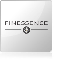 Finessence