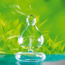 Bonnes Idées Greenweez 35 - Diffuseur en verre - Tsylia
