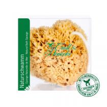 Croll and Denecke - Large Natural Sponge