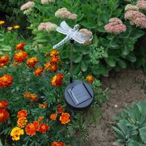 Galix - Solar-Deko-Leuchte Libelle
