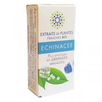 Kosmeo - Echinacée Bio Granules Sans Alcool