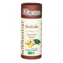 Ayur-Vana - Andraka bio - 60 gélules végétales