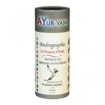 Ayur-Vana - Andrographis - 60 gélules végétales