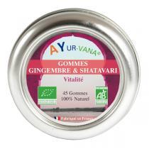 Ayur-Vana - Gommes Gingembre & Shatavari bio - 45 g