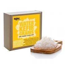 Kefirko - Grains de kéfir d'eau déshydratés 15g