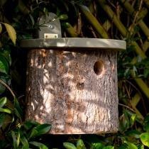 Wildlife World - Nichoir rondin pour oiseaux National Trust