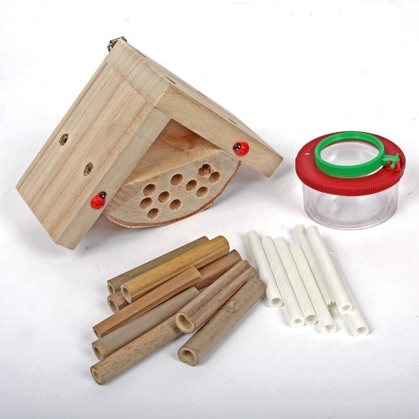 Kit enfants maison insectes wildlife world acheter sur for Lumiere maison exterieur