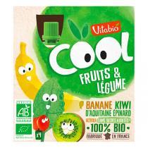 Vitabio - Compote Banane kiwi Epinard gourde 4x90g