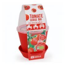 Radis et Capucine - Pot cloche avec graines de tomates cerises Bio