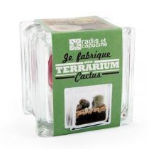 Radis et Capucine - Terrarium Cactus à faire soi-même