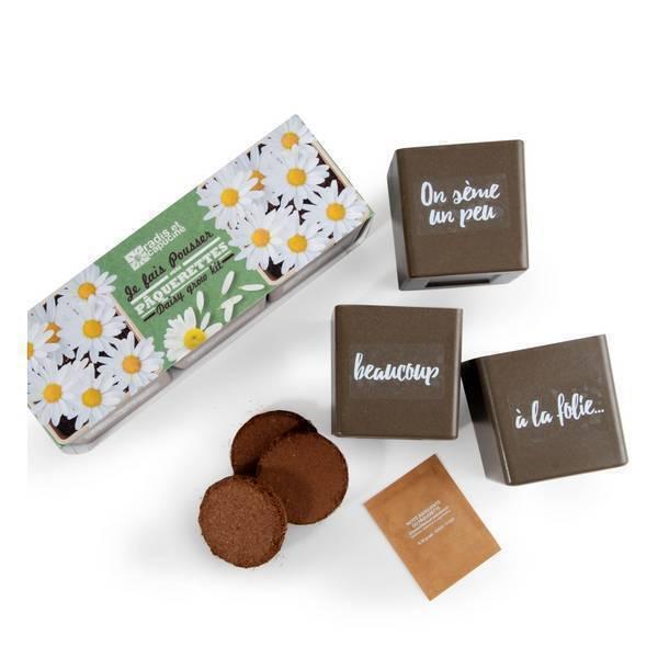 Radis et Capucine - Trio de pâquerettes bio à semer en pots avec message