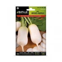 Batlle - Graines de navet Virtudes variété Martillo bio