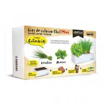 Batlle - Kit de culture Seed Box Mini aromates 385g