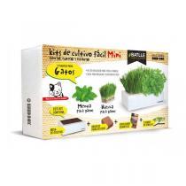 Batlle - Kit de culture Seed Box Mini Herbe à chat 385g