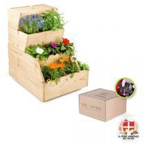 Easy Jardin - Potager composteur Easy Jardin 500 et vers de compost