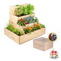 Easy Jardin - Potager composteur Easy Jardin 800 et vers de compost