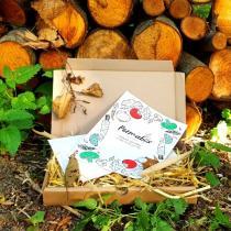 Permabox - Box de jardinage en permaculture Permabox