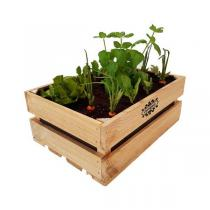 Vergea - Bac en bois pour potager urbain 49 x 35 x 19,5cm