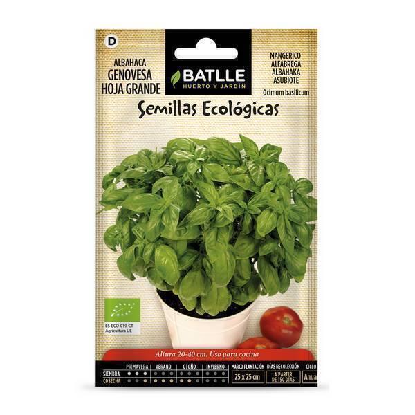 Batlle - Graines de basilic Grand vert bio