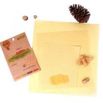 Apifilm - Lot de 3 emballages réutilisables S M et L