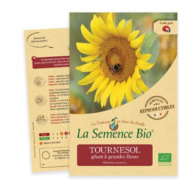 La Semence Bio - Graines de Tournesol géant