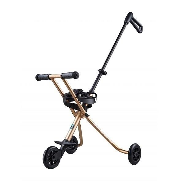 Micro - Porteur Micro Trike Gold des 18 mois
