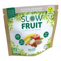 Slowfruit - Encas pépites de fruits Pomme Banane Chanvre 25g