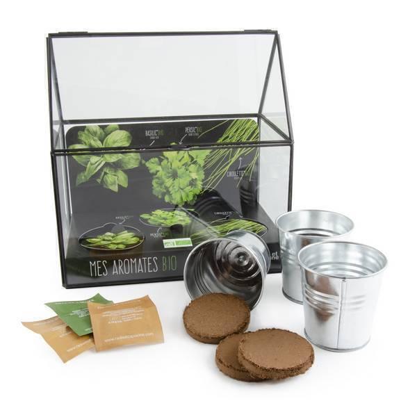 Radis et Capucine - Potager d'intérieur 3 pots aromates