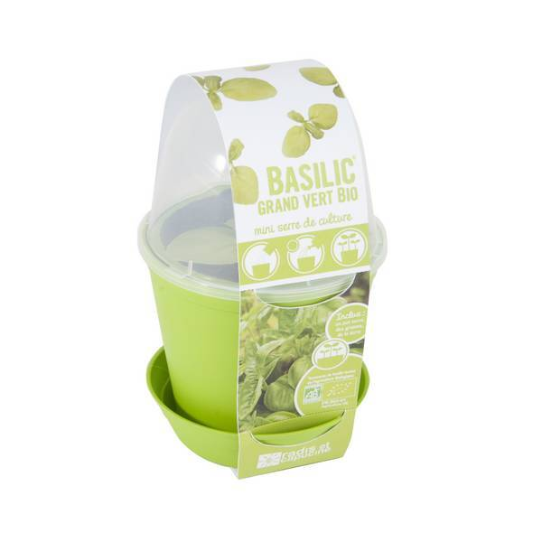 Radis et Capucine - Pot cloche avec graines de basilic
