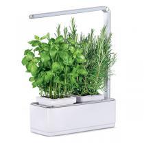 Kitchen Gardening - Potager d'intérieur Viviana blanc