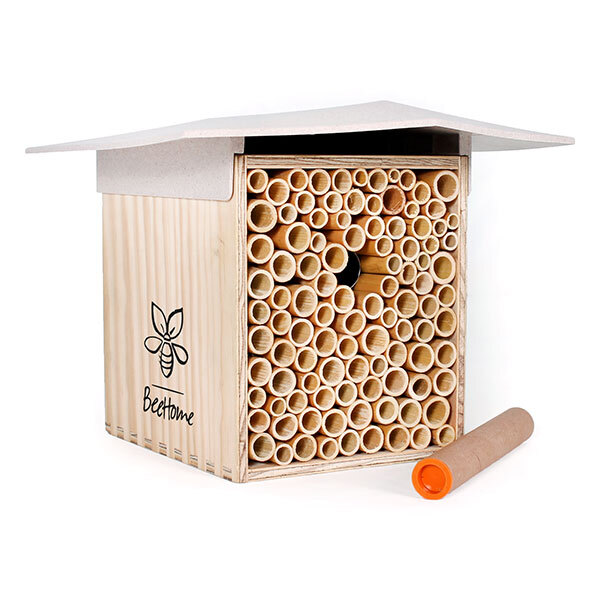 BeeHome - Abri pour abeilles sauvages Crème