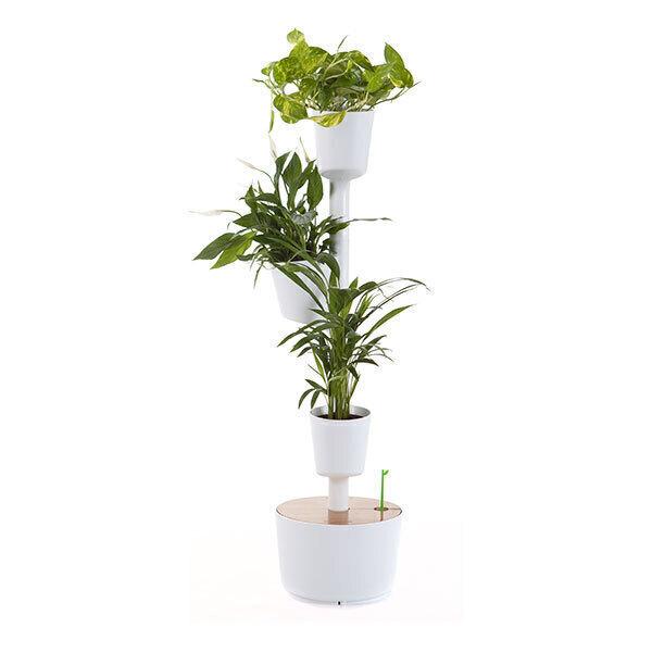 Citysens - Jardin d'intérieur arrosage auto 3 plantes Blanc