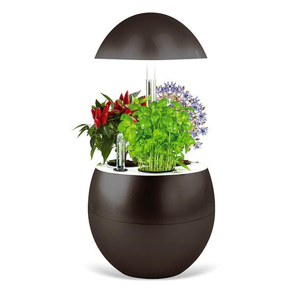 Kitchen Gardening - Potager d'intérieur connecté Vilma Charbon