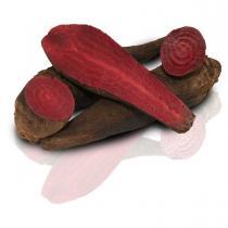 Fruits & Légumes du Marché Bio - Betterave Rouge