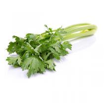 Fruits & Légumes du Marché Bio - Céleri branche