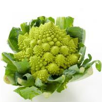 Fruits & Légumes du Marché Bio - Chou Romanesco. France
