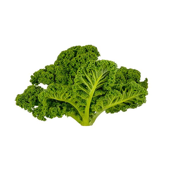 Fruits & Légumes locaux IDF Bio - Chou Kale. Ile de France