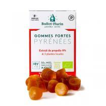 Ballot-Flurin - Gommes forte des Pyrénées