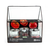 Radis et Capucine - Potager d'intérieur 3 pots tomates