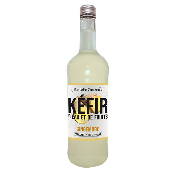 Le Labo Dumoulin - Kéfir de fruits Gingembre bio 75cl