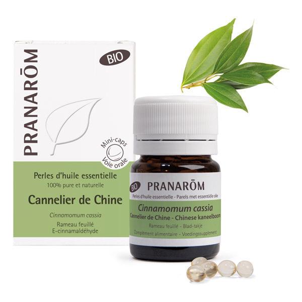 Pranarôm - Huile essentielle de Cannelier de Chine Rameau feuillé 60 perle