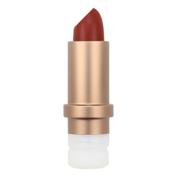 DYP Cosmethic - Recharge rouge à lèvres 420 3,5g