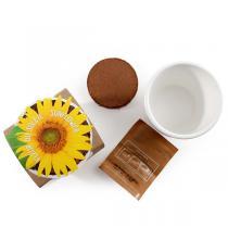 Radis et Capucine - Pot blanc Tourneseol bio 8 cm