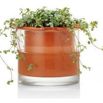 Wet Pot - Pot en terre cuite avec réservoir d'eau L