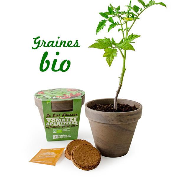 Radis et Capucine - Pot Terre cuite Basalte Tomate cerise bio 13cm