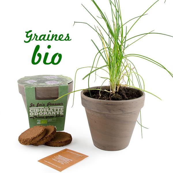 Radis et Capucine - Pot Terre cuite Basalte Ciboulette bio 13cm