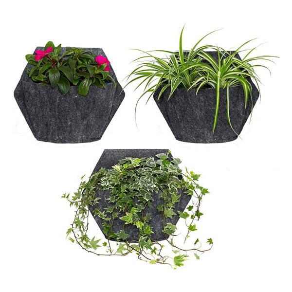 Citysens - 3 pots muraux arrosage automatique housse textile et pothos