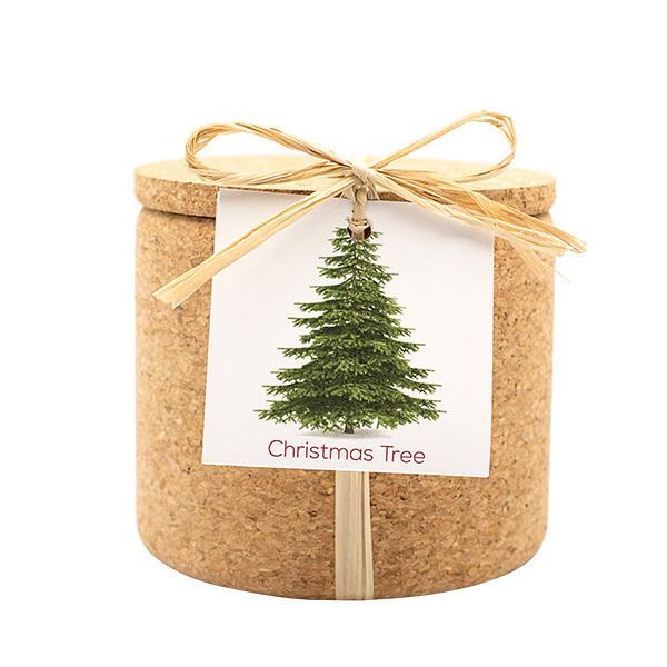 Life in a Bag - Kit de plantation Grow Cork sapin de Noël
