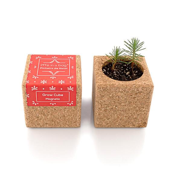 Life in a Bag - Kit de plantation aimanté Grow Cube sapin de Noël rouge
