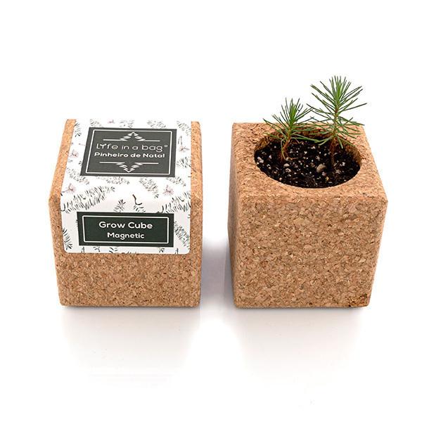 Life in a Bag - Kit de plantation aimanté Grow Cube sapin de Noël vert